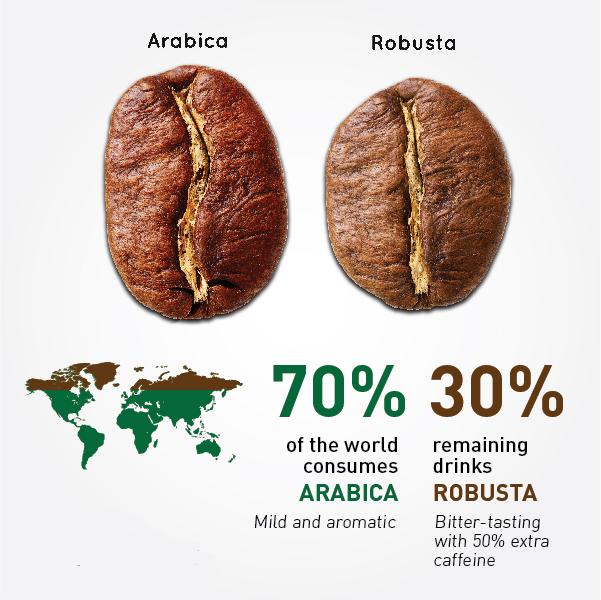 تفاوت قهوه روبستا و عربیکا